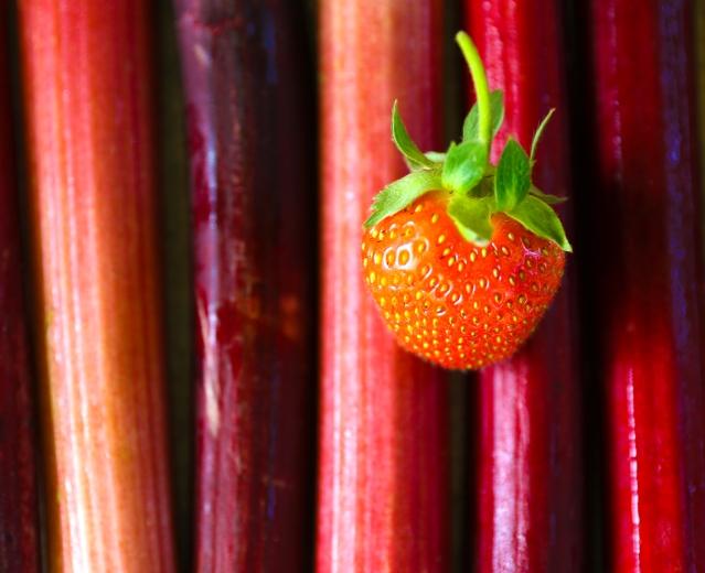 Strawberry Rhubarb Pound Cake Bites | Flour and Fancy